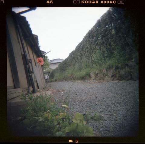 20070421_Kodak400VC_05.jpg