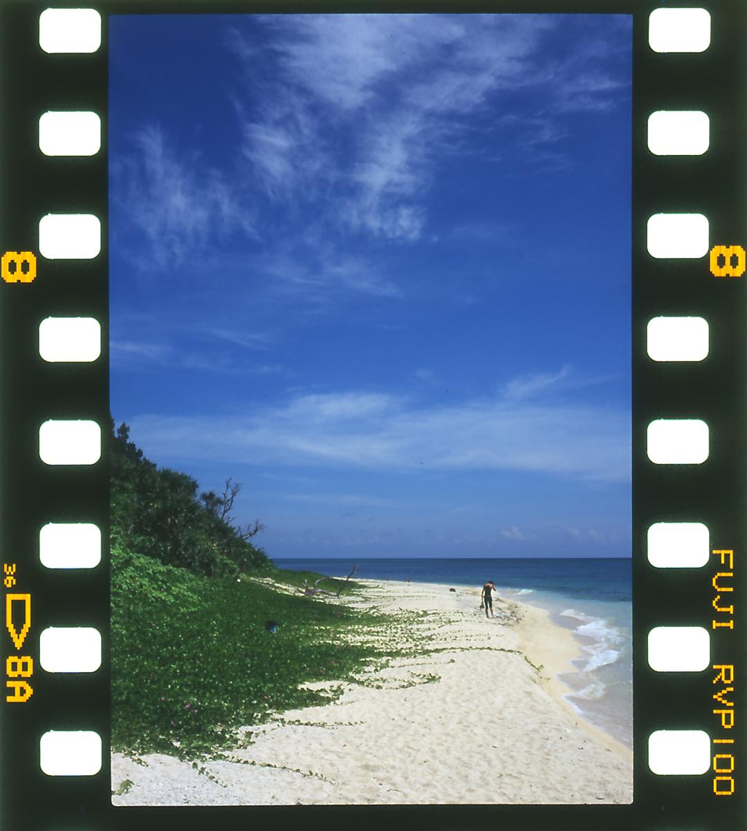 お浜の画像
