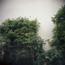 s_20070421_Kodak400VC_04.jpg