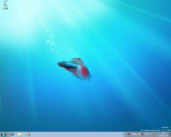 20090208win7_desktop.jpg