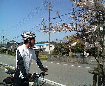 妻が撮ってくれた「桜と私」